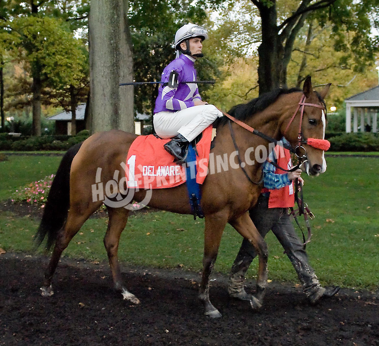 Scoot before The Buzz Brauninger Arabian Distaff Handicap at Delaware Park on 10/24/09