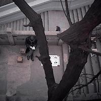 An elderly fortune-teller waits for customers underneath a tree near Yellow Crane Tower, or Huang He Lou, in Wuhan, Hubei province, December 2011. (Mamiya 6, 75mm f3.5, Kodak Ektar 100 film)