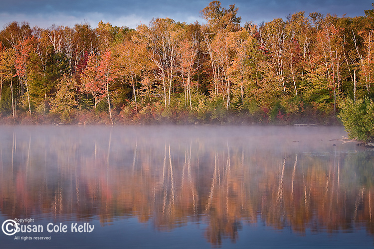 Morning mist, Autumn, Ferguson Lake, ME, USA