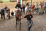 Point of Entry, ridden by John Velazquez, wins the Joe Hirsch Turf Classic Invitational Stakes (GI) at Belmont Park, In Elmont, New York on September 29, 2010.