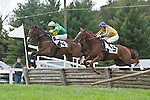 1 October 2011: Aero and Jeff Murphy (left) win the National Sporting Library Chronicle Cup Timber Stakes at Virginia Fall Races in Middleburg, Va. He's a Conniver and Bernie Dalton (right) came in third. Aero is owned by Alfred Griffen, Jr and trained by Doug Fout. Susan M. Carter/Eclipse Sportswire