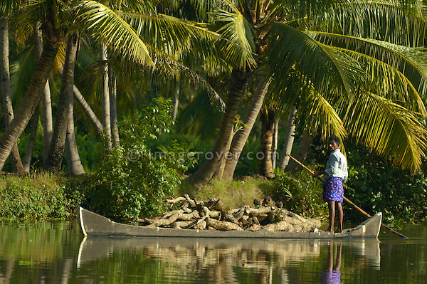 India, Kerala, backwaters. Working indian man transporting timber on his boat (punt) in the backwaters between Kollam to Allepey. No releases available.