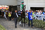 NEW ORLEANS, LA - FEBRUARY 20:<br /> Venus Valentine #3, ridden by Corey J Lanerie leaves the padock to run the Rachel Alexandra Stakes in the Louisiana Derby Preview Race Day at Fairgrounds Race Course on February 20,2016 in New Orleans, Louisiana. (Photo by Steve Dalmado/Eclipse Sportswire/Getty Images)
