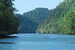 Wildlife and scenes along the Rio Dulce in Guatemala.