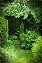 Archway in yew hedge, Vann House and Garden, Surrey, mid June.