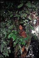 Boy collection medicinal plants. Amazon jungle, Peru