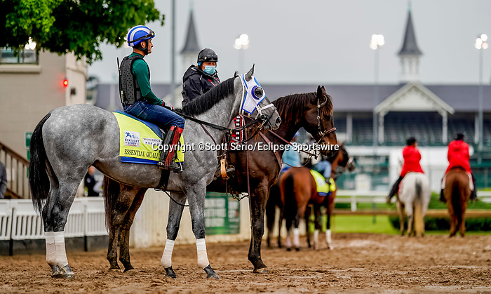 April 29, 2021: Essential Quality, trained by trainer Brad Cox, exercises in preparation for the Kentucky Derby at Churchill Downs on April 29, 2021 in Louisville, Kentucky. Scott Serio/Eclipse Sportswire/CSM