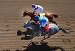 April 7, 2012. I'll Have Another and Mario Gutierrez(top) win the Santa Anita Derby(GI) at Santa Anita Park in Arcadia, CA.