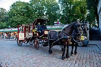 Estonia, Tallinn, Old town, UNESCO World Heritage Site. Horse & carriage.