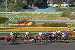 July 09, 2011: The field passes the grandstand for the first time in the Hollywood Gold Cup. First Dude(#7) would be the eventual winner, at Hollywood Park, Inglewood, CA . .