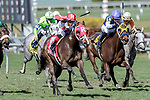 HALLANDALE BEACH, FL - FEB 17:Beach Waltz #1 trained by Michael J. Maker with Jose Ortiz in the irons wins the $60,000 Mrs. Presidentress Claiming Stakes at Gulfstream Park on February 17, 2018 in Hallandale Beach, Florida. (Photo by Bob Aaron/Eclipse Sportswire/Getty Images)
