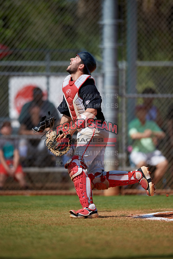 Ball State Cardinals catcher Chase Sebby (20) tracks a foul ball during a game against the Saint Joseph's Hawks on March 9, 2019 at North Charlotte Regional Park in Port Charlotte, Florida.  Ball State defeated Saint Joseph's 7-5.  (Mike Janes/Four Seam Images)