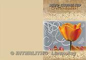 Alfredo, FLOWERS, paintings, BRTOCH40516CP,#F# Blumen, flores, illustrations, pinturas