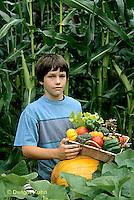HS18-103z  Boy harvesting vegetables -  tomato, cucumber, carrot, squash, broccoli, lettuce, pumpkin