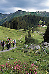 Austria, Vorarlberg, near Schroecken: group hiking along Lake Koerber south-east of Hochtannberg passroad with Hotel Koerbersee at background
