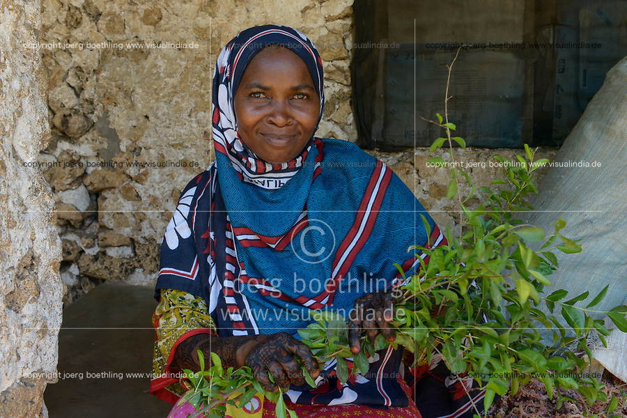 TANZANIA, Zanzibar, woman with Henna hand painting and henna plant , Lawsonia inermis,  from which   leaves the Henna colour is extracted / Frau mit Henna Handbemalung und Henna Pflanze aus deren Blaetter die Henna Farbe gewonnen wird