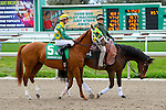 February 21, 2015: Irish You Well with Florent Geroux up in the Mineshaft Handicap at the New Orleans Fairgrounds Risen Star Stakes Day. Steve Dalmado/ESW/CSM