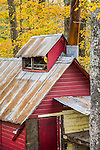 Fall foliage at the Red Barn Farm sugarhouse, Quechee, VT