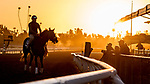 October 28, 2019 : Scenes from preparations for the Breeders' Cup at Santa Anita Park in Arcadia, California on October 28, 2019. Sydney Serio/Eclipse Sportswire/Breeders' Cup/CSM