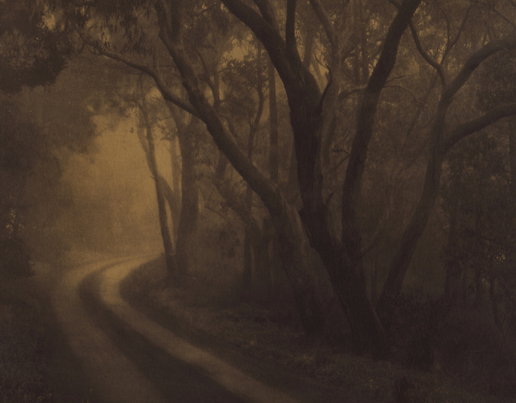 Lost road in Somnamblia<br /> Coffee & Rooibos toned cyanotype