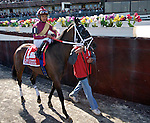 Hot Summer, Luis Saez up, heads to the track before winning The Comely Stakes at Aqueduct Race Track in Ozone Park, New York on April 9, 2011.