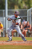 Central Michigan Chippewas shortstop Zach McKinstry (8) squares to bunt during a game against the Boston College Eagles on March 8, 2016 at North Charlotte Regional Park in Port Charlotte, Florida.  Boston College defeated Central Michigan 9-3.  (Mike Janes/Four Seam Images)
