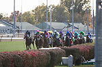 Enable (#2, Nathaniel), Frankie Dettori up, wind the BC Turf at Churchill Downs 11.03.18. John Gosden trainer, Juddmonte Farms owner.