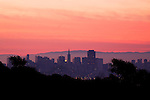 Skyline of San Francisco, Tiburon Uplands Nature Preserve, Tiburon, Bay Area, California