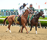 Curling (no. 6), ridden by John Velazquez and trained by Todd Pletcher, wins the 85th running of the grade 1 Acorn Stakes for three year old fillies on June 06, 2015 at Belmont Park in Elmont, New York. (Bob Mayberger/Eclipse Sportswire)