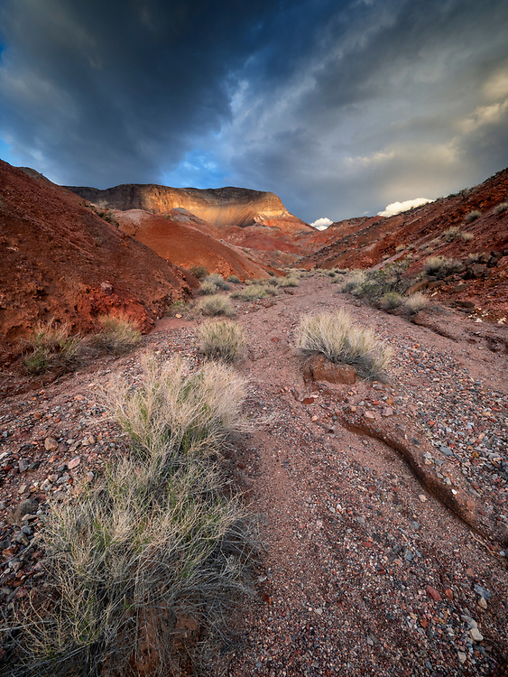 An afternoon storm brews over Fortification Hill near Kingman Wash in Glen Canyon National Recreation Area on the Arizona-Nevada border (Photo from Arizona)