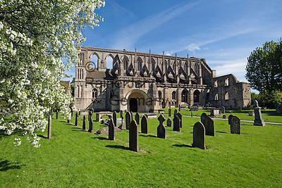 United Kingdom, England, Wiltshire, Malmesbury: Malmesbury Abbey   Grossbritannien, England, Wiltshire, Malmesbury: Kloster Malmesbury Abbey