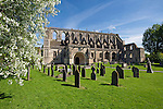 United Kingdom, England, Wiltshire, Malmesbury: Malmesbury Abbey | Grossbritannien, England, Wiltshire, Malmesbury: Kloster Malmesbury Abbey