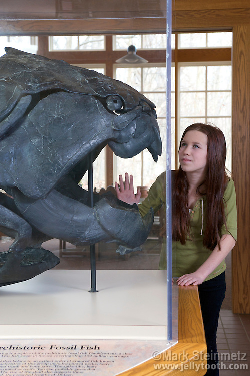 Cast of a Dunkleosteus terrelli skull, a Late Devonian Placodermi armored fish. Even its eyes had plates preserved by fossilization. Dunkleosteus was an apex mega-predator of the period, growing up to 30 feet long and weighing up to 4 tons. This is a replica of a fossil found by Jay Terrell in 1897 in the shales around Cleveland, Ohio, USA.