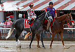 Tapwrit (no. 1) in the Post Parade for the  Whitney Stakes (Grade I), Aug. 4, 2018 at the Saratoga Race Course, Saratoga Springs, NY.  Ridden by John Velazquez.  (Photo credit: Bruce Dudek/Eclipse Sportswire)