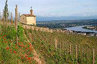 The la chapelle chapel vineyard hermitage rhone france