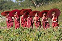 Myanmar, Burma. Bagan.  Young Novice Monks with Umbrellas.