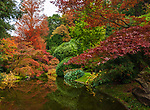 Italy, Lombardia, Bellagio: villa Melzi with park - Japanese garden   Italien, Lombardei, Bellagio: Villa Melzi mit Park direkt am Comer See - der japanische Garten