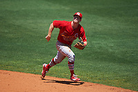 Palm Beach Cardinals second baseman Andrew Brodbeck (5) during a game against the Charlotte Stone Crabs on April 10, 2016 at Charlotte Sports Park in Port Charlotte, Florida.  Palm Beach defeated Charlotte 4-1.  (Mike Janes/Four Seam Images)