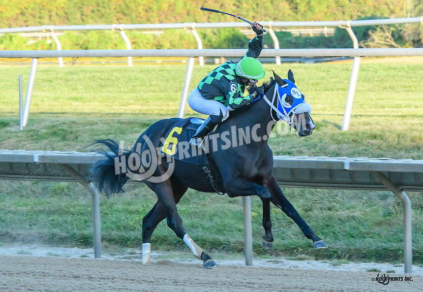 Camp Counselor winning at Delaware Park on 10/5/19