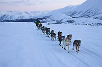 Lance Mackeys team on the trail leaving Rainy Pass Chkpt 2006 Iditarod Alaska Range Rainy Pass Alaska