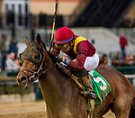 OZONE PARK, NEW YORK - DEC 2: Catholic Boy, #5, ridden by Manuel Franco, wins the Remsen Stakes, at Aqueduct Racetrack, on December2, 2017 in Ozone Park, New York. ( Photo by Sue Kawczynski/Eclipse Sportswire/Getty Images)