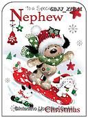 Jonny, CHRISTMAS ANIMALS, WEIHNACHTEN TIERE, NAVIDAD ANIMALES, paintings+++++,GBJJXFS41,#xa#