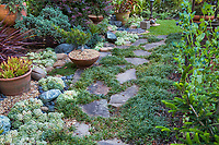 Stepping stone path with lilyturf (Liriope muscari) groundcover by gravel mulch succulent bed in California plant collector garden - Carol Brant