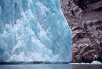 Alaska, Endicott Arm, Dawes Glacier, sea birds forage at the base of a tidewater glacier, Southeast Alaska, Inside Passage,