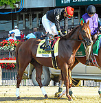 July 4, 2021: Top Seed, ridden by Jose Ortiz, in the post parade prior to the 2021 running of the G2 John A. Nerud S. at Belmont Park in Elmont, NY. Sophie Shore/ESW/CSM