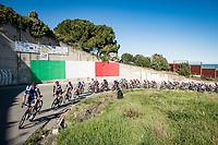 peloton in front of Italian Flag mural<br /> <br /> Stage 6 from Castelraimondo to Lido di Fermo (169km)<br /> <br /> 56th Tirreno-Adriatico 2021 (2.UWT) <br /> <br /> ©kramon