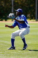 Julio Castillo - Chicago Cubs - 2009 spring training.Photo by:  Bill Mitchell/Four Seam Images
