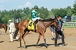 August 8, 2020: My Sister Nat (FR) ridden by Jose Ortiz wins the Grade 3 Waya for trainer Chad Brown on Travers Day at Saratoga Racecourse in Saratoga Springs, N.Y. Rob Simmons/Eclipse Sportswire/CSM