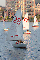 Sailboats from the Massachusetts Institute of Technology (MIT) sailing pavilion on the Charles River in Boston, Massachusetts