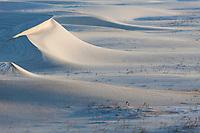 Snow drifts, Barter Island, Arctic National Wildlife Refuge, Arctic, Alaska.